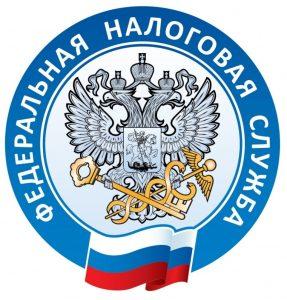 Консультация в ФНС РФ